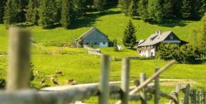 Teichalm - Harrer-Hütte